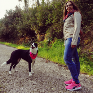 reino by pixie passeio com cao border collie