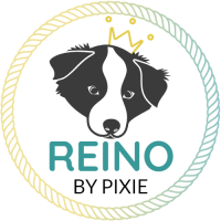 REINO BY PIXIE